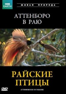 BBC: Райские птицы / Attenborough in Paradise (1996)