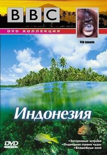 23 08 2005 - информация отдела по защите прав потребителей